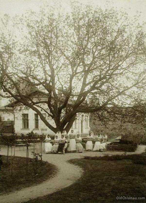 Группа сестёр милосердия в саду больницы.