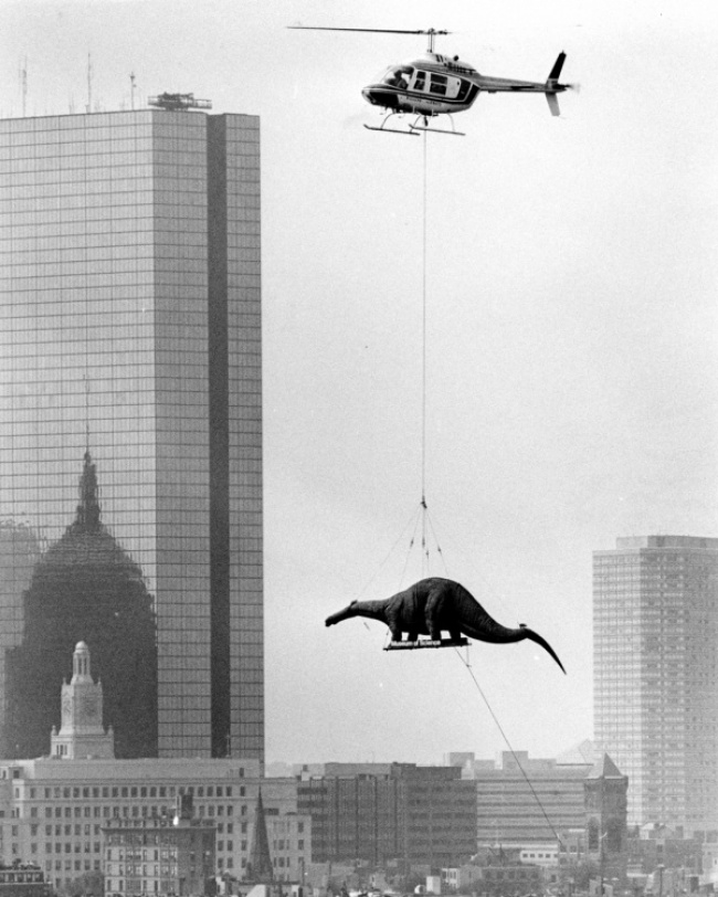 Динозавра доставляют по воздуху в Бостонский музей науки. 1984 год.