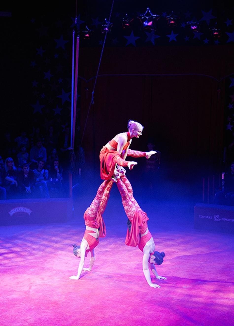 chisinau-circus-11