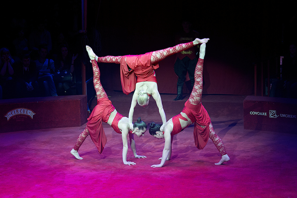 chisinau-circus-12