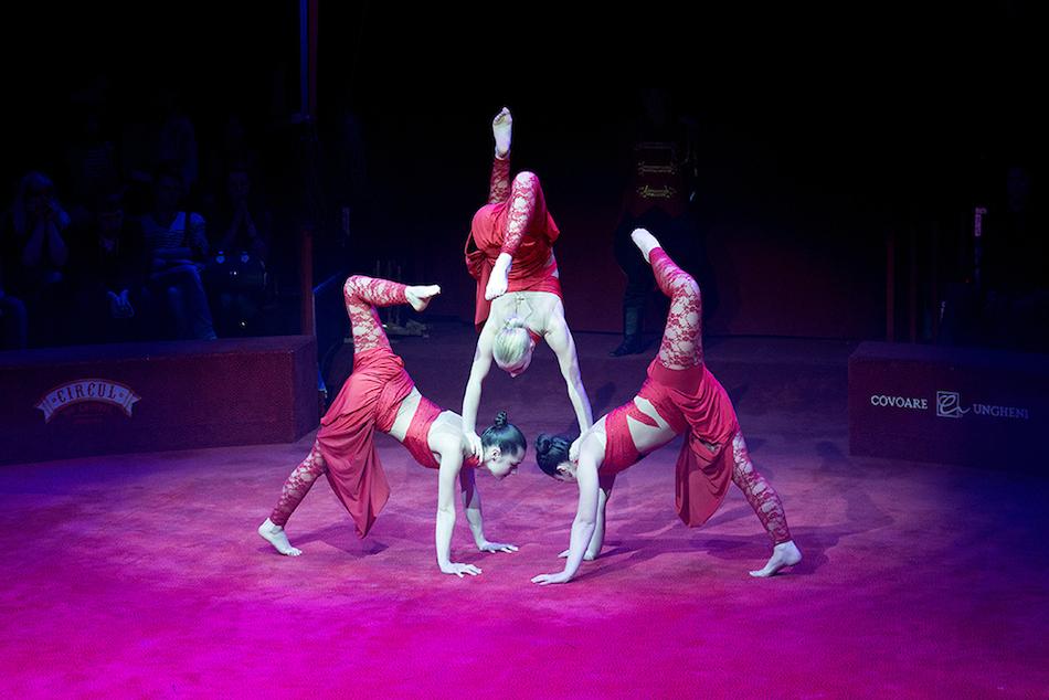 chisinau-circus-13
