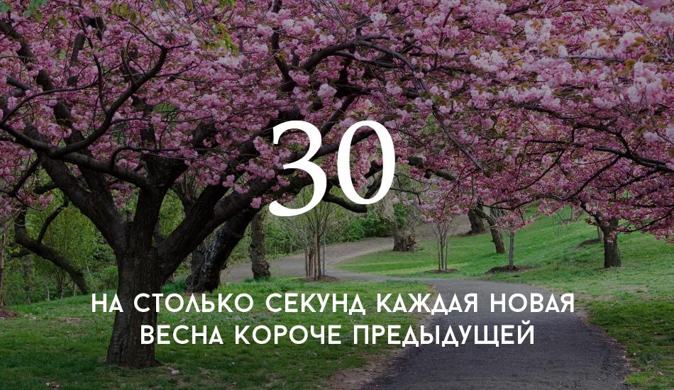 rabstol_net_spring_15 copy