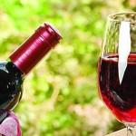 Президент Indian Wine Academy влюбился в молдавское вино