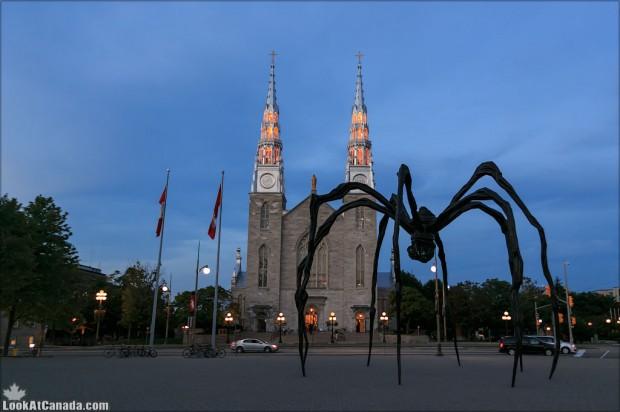 20120826_canada_ottawa_maman_spider_001_2K1A7921