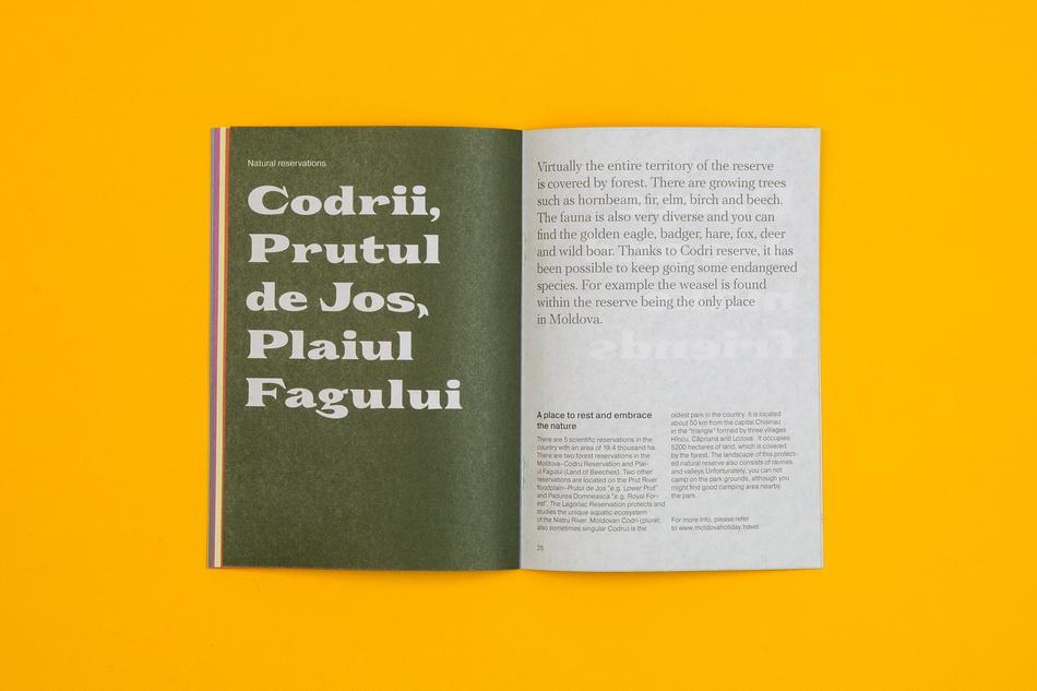 dmitri-moruz_branding-moldova_booklet_13