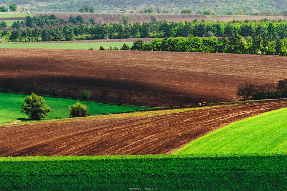 maxim-chumash-moldova-photography-1