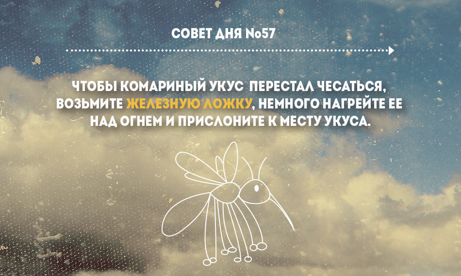 Безымянный-57