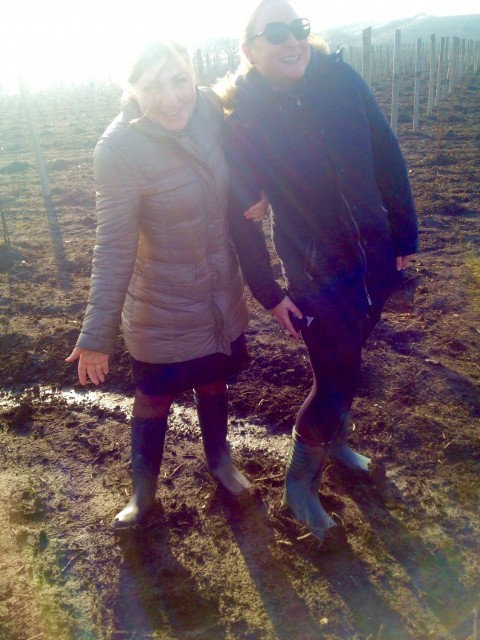 Beth-Willard-Muddy-Vineyard-480x640