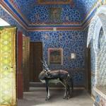 Мир фауны в индийских дворцах глазами Карен Кнорр
