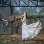 «Ароматы лета» — коллекция ᔕᑌᔕᗩᗰᗰᗩ в фотографиях Елены Горошки