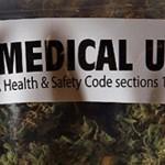 Медицинское сообщество Молдовы выступает за легализацию конопли