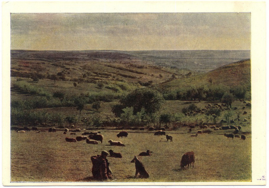 Молдавский пейзаж (фото И.Шапиро)