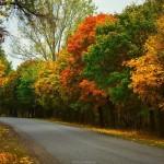 Осень в Молдове в кадрах Максима Чумаша
