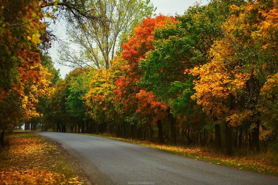 Осень в Молдове, дорога на Ниспорены-chumash