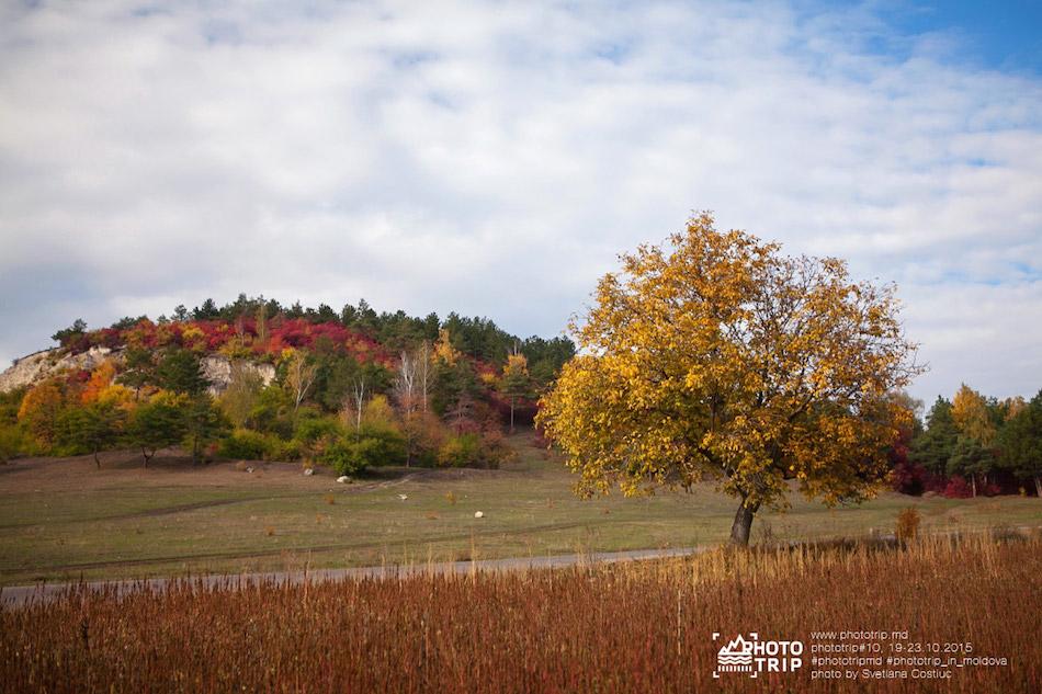 Roman-Rybalev-trip-Moldova-10