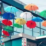 Разноцветные зонтики украсили Кишинев