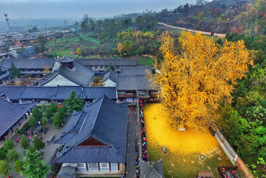 01-buddhist-temple