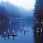 Фото: крупнейший фестиваль искусств The Echigo-Tsumari Art Triennale