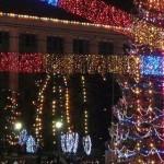 Мэрия Кишинева ищет рождественскую ель и место для ее установки