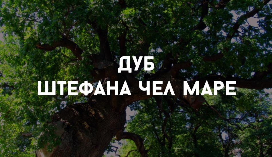 Sholdaneshty_locals (5)