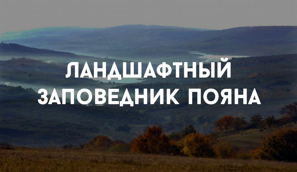 Sholdaneshty_locals (9)