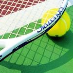 Лучшим теннисистом Молдовы 2015 года стал Раду Албот