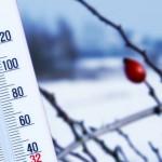 Начало зимы в Молдове выдалось теплее обычного — метеорологи