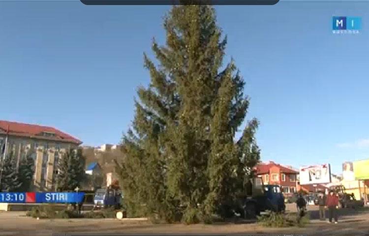 xmas_tree_soroka