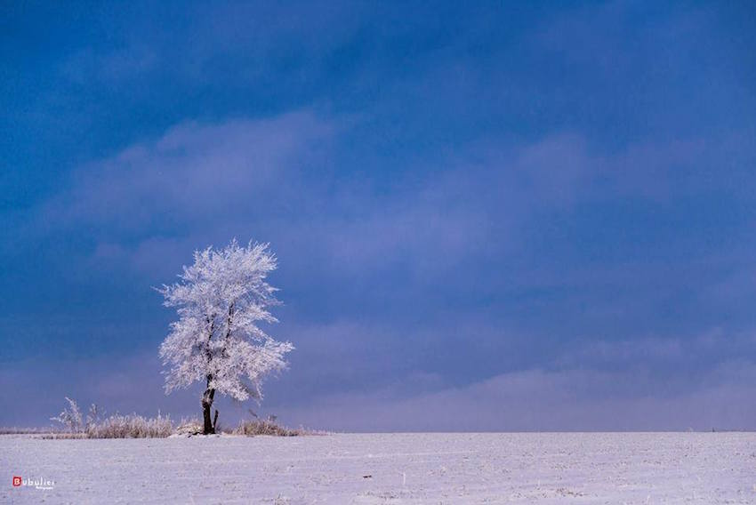 Drumul spre nordul Republicii Moldova, prin obiectivul fotografului Dinu Bubulici67