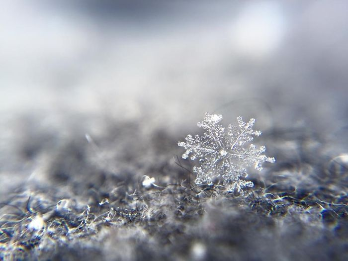 magic-of-snow-i-try-to-capture-a-perfect-snowflake-3__700