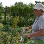 Из дневника одиночного велопутешествия украинской пенсионерки Ларисы Русаковой по Молдове