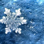 Метеорологи объявили «желтый код» в Молдове в связи с заморозками