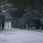 Одна снежная ночь в фотографиях Максима Чумаша