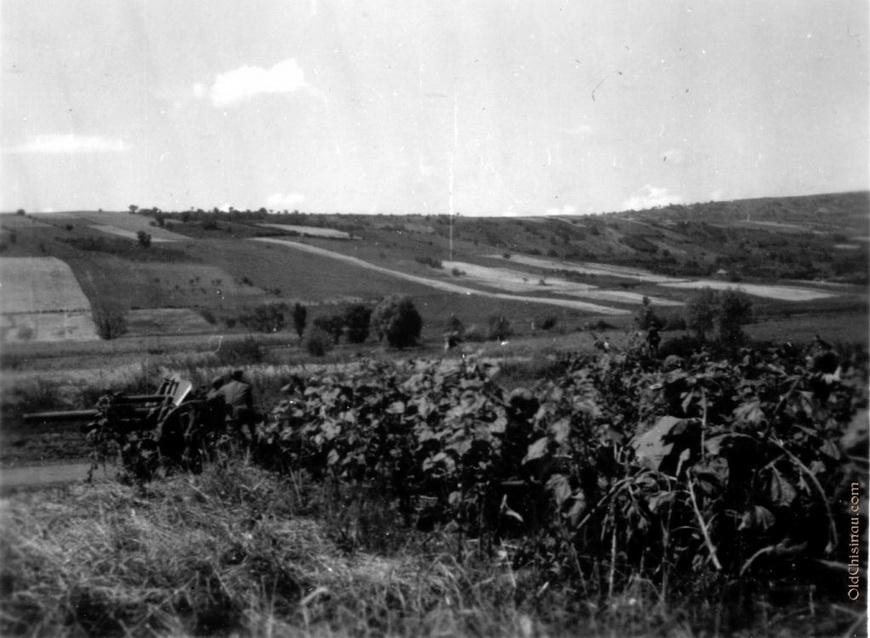 05-war-1941