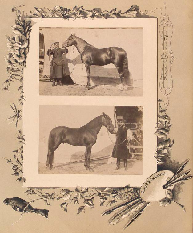101-vidi-Kishineva-1889