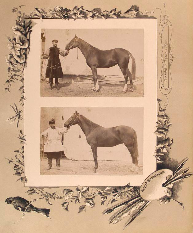 102-vidi-Kishineva-1889