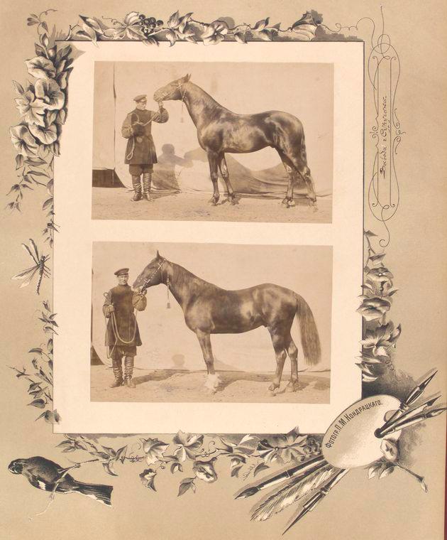 103-vidi-Kishineva-1889