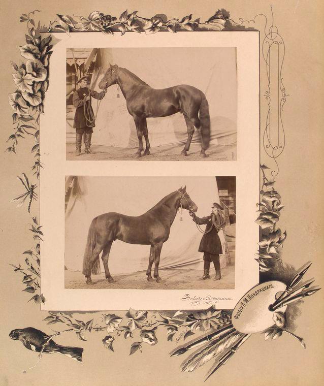 104-vidi-Kishineva-1889