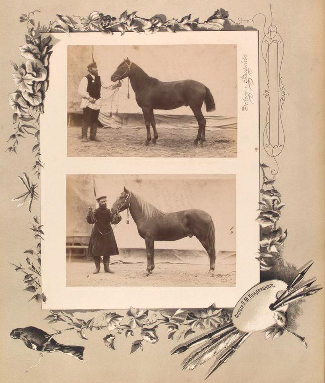 105-vidi-Kishineva-1889