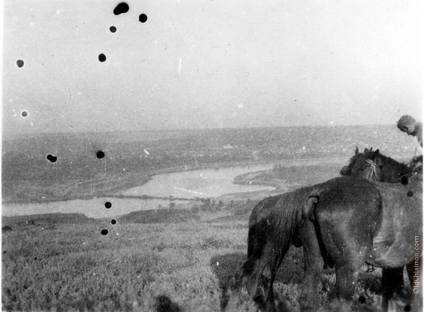 Вид на Днестр со стороны нынешнего села Дзержинское.