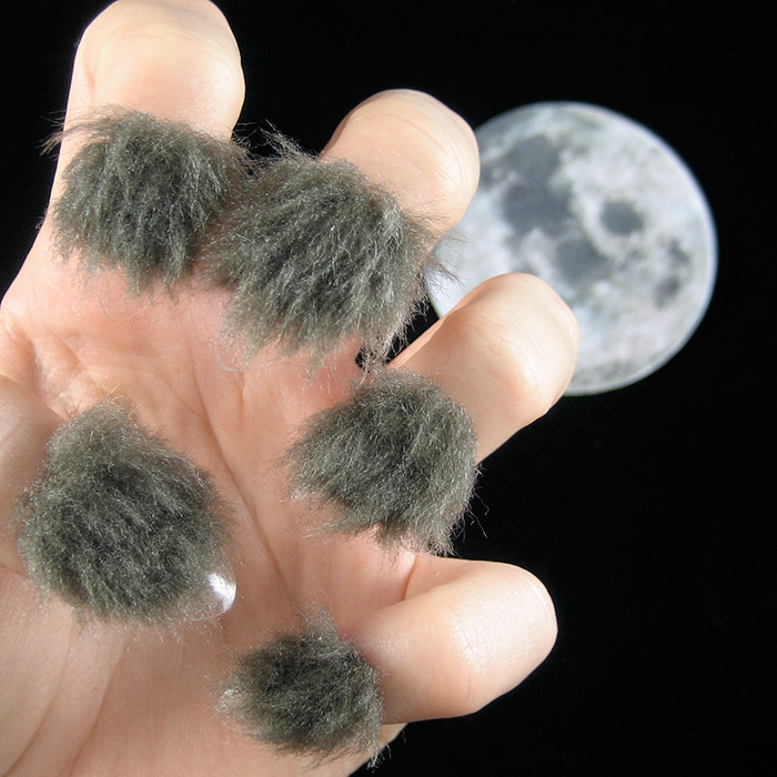 fur-nails-21__700