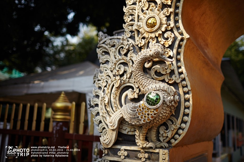 thailand2016_part3_018_950x633