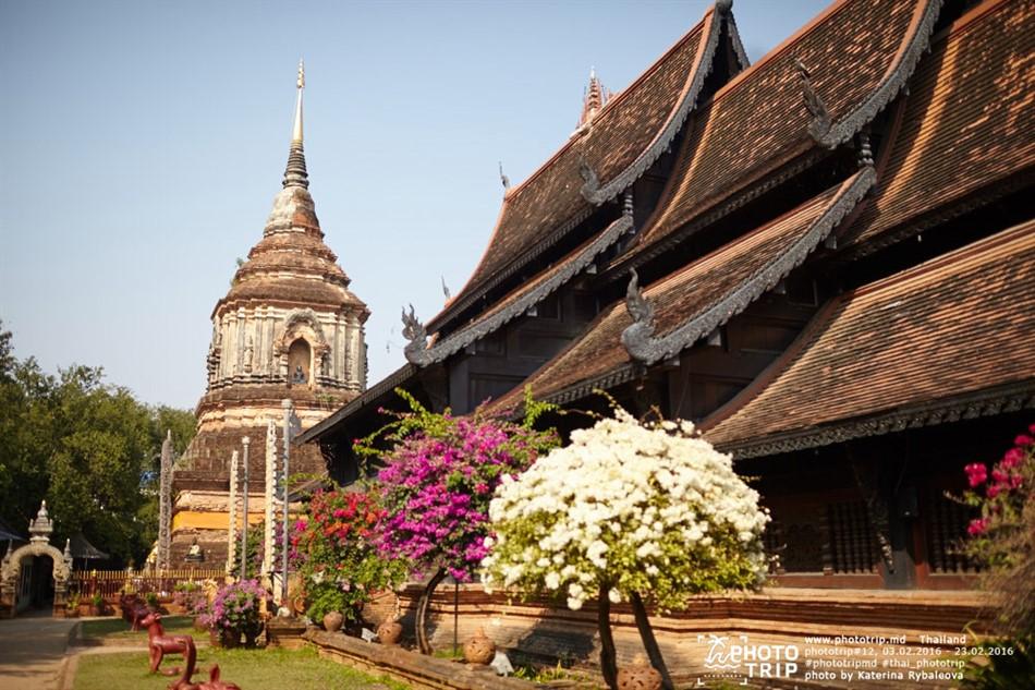 thailand2016_part3_021_950x633
