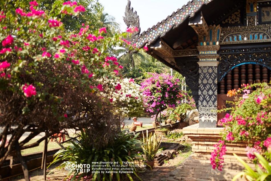 thailand2016_part3_022_950x633