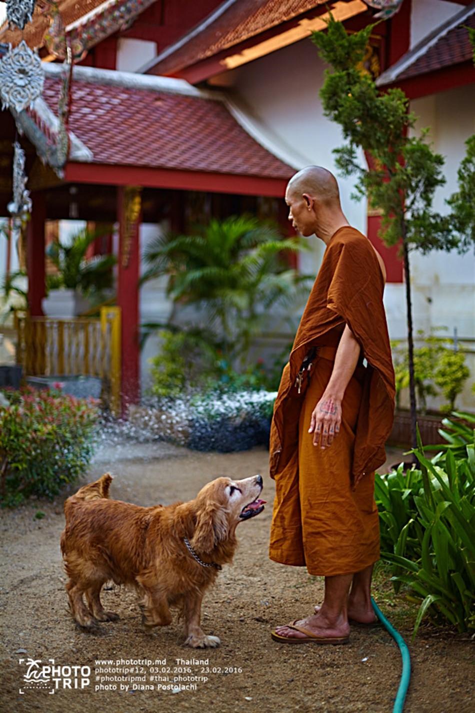 thailand2016_part3_048_950x1424