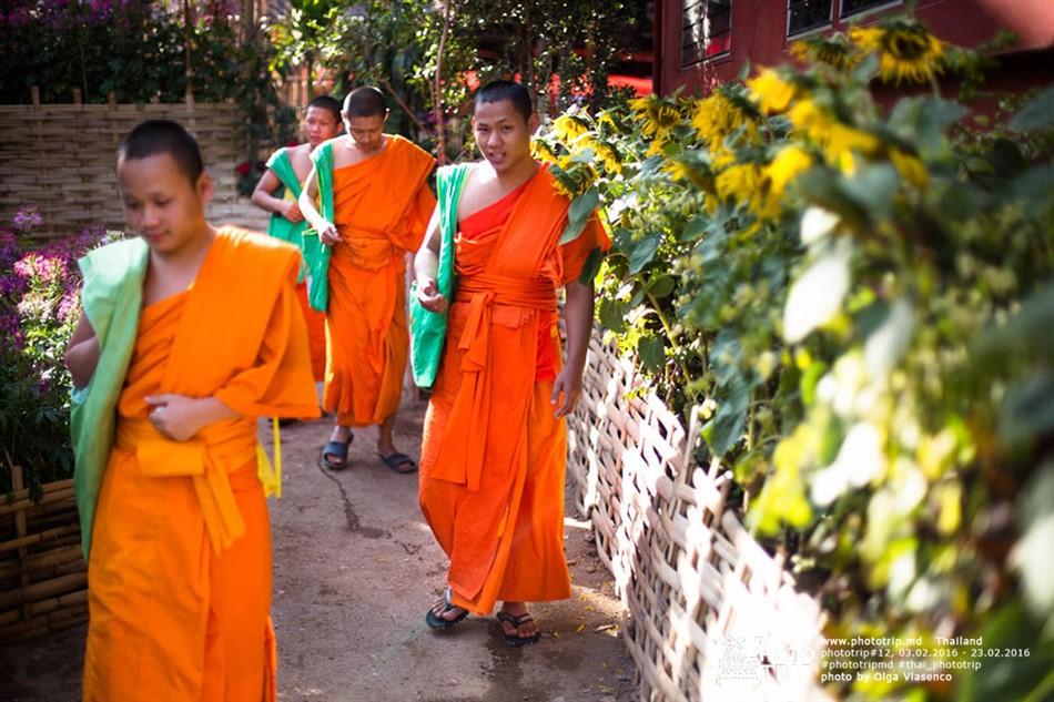 thailand2016_part3_060_950x633