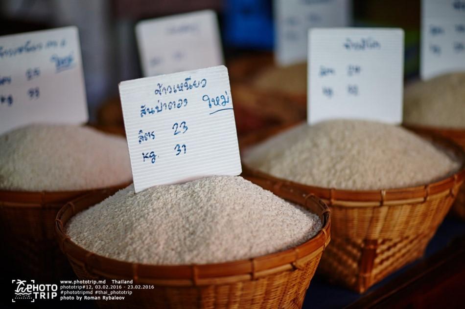 thailand2016_part4_010_950x633