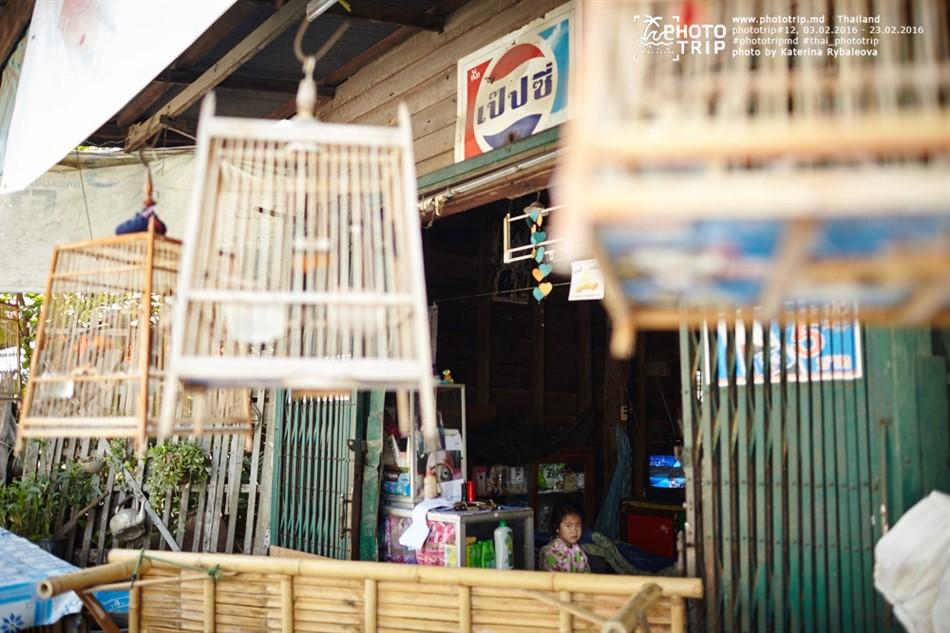 thailand2016_part4_028_950x633