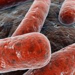 В Молдове из-за халатности семейного врача почти 70 детей были инфицированы туберкулезом