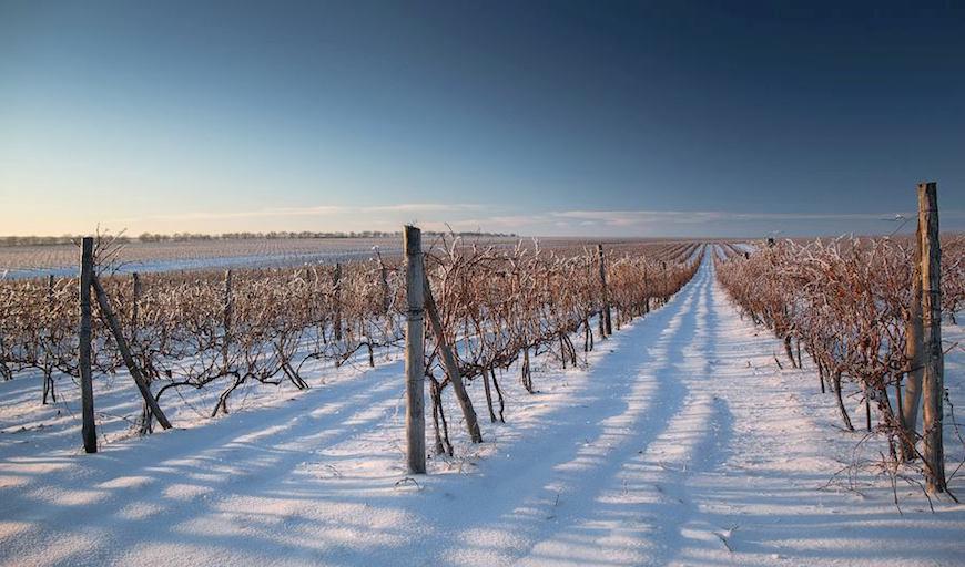 большом количестве молдавия что посмотреть зимой даже